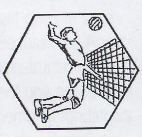 Logo Volley