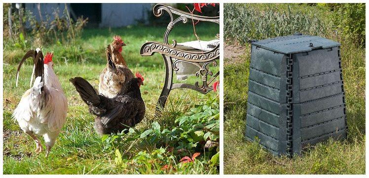 Poules, Lombricomposteurs, … à chacun sa méthode pour réduire ses déchets !