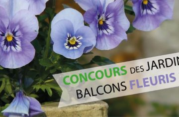 Concours des jardins et balcons fleuris : c'est reparti !