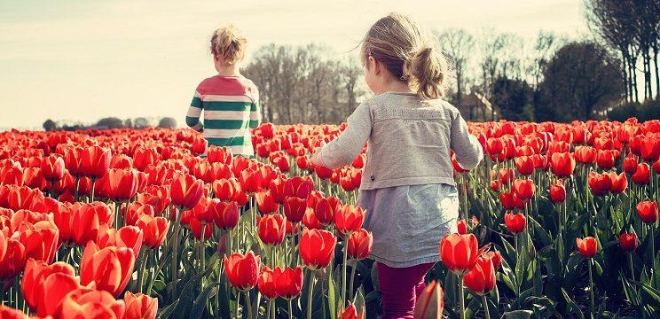 Accueils de loisirs : programme des vacances de printemps