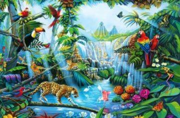 Le mois d'août à l'accueil de loisirs avec Jungle Paradise !