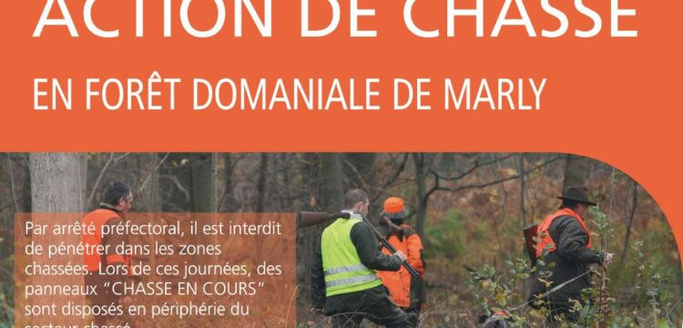 PRUDENCE : Action de chasse en forêt de Marly