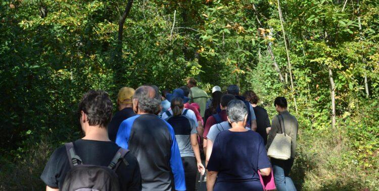Versailles Grand Parc s'associe à l'ONF pour un meilleur accueil en forêt