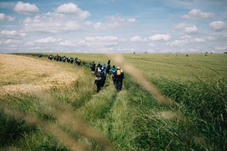 Incivilités de certains promeneurs dans la plaine …
